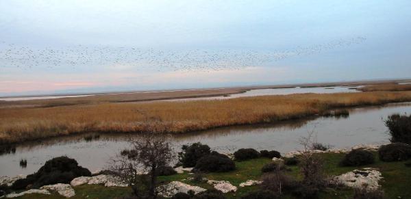 Gala Gölü Milli Parki, Kaçak Avcilarin Tehdidi Altinda