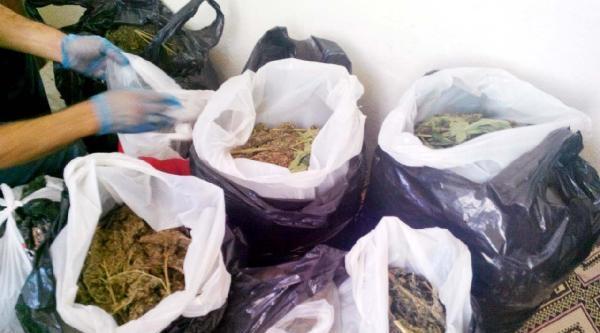 Gaziantep'te Esrar Ticaretine Tutuklama