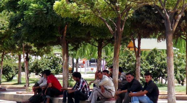 Gaziantep'te 'gerginlik' Alarmı