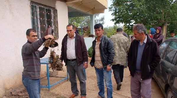 Gaziantep'te Soba Faciası: Yaşlı Kadın Öldü, Eşi Hastanede