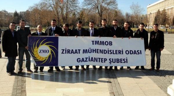 Gaziantep'te 'tarimsal Öğretim' Kutlandi