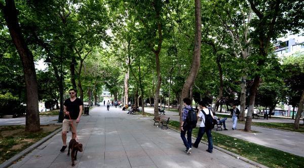 Gezi Parkından Renkli Görüntüler