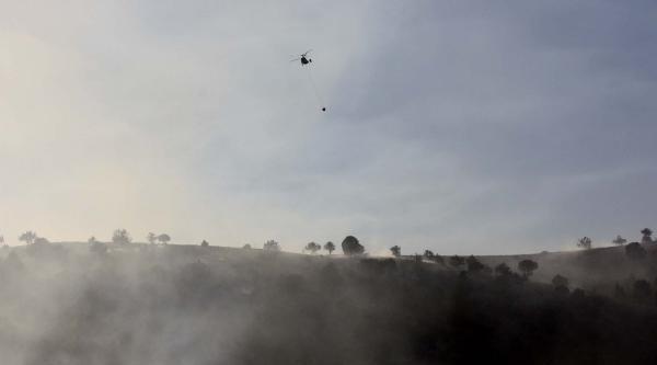 Göksun'da 25 Hektar Alandaki Ağaçlar Yandı