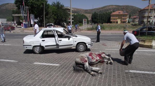 Gölbaşı'nda Otomobil Ata Çarpti: 3 Yaralı