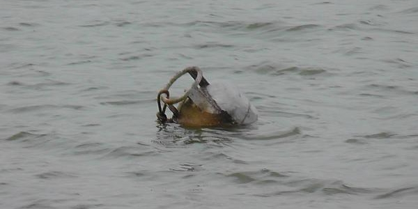 Gölbaşi'nin Akciğeri Mogan Gölü'nde Kirlilik Alarmi