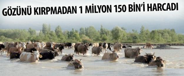 Gözünü kırpmadan 1 milyon 150 bin'i harcadı!