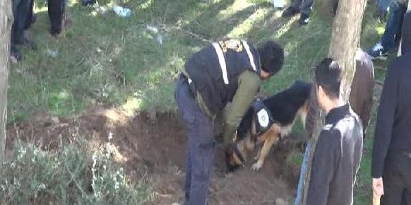 Gülsuyu'nda Ormanlik Alanda Polis Mühimmat Ariyor (2)
