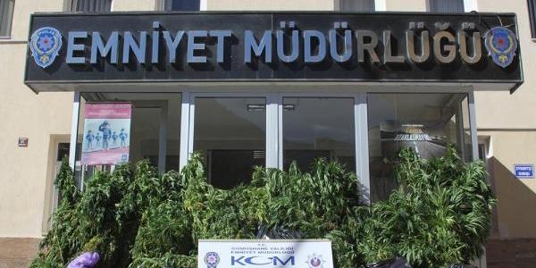Gümüşhane Ve Trabzon'da 25 Kilo Esrar Ele Geçirildi