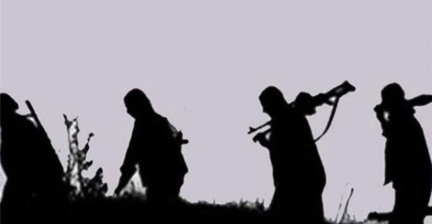 Hakkari'de 2 PKK'lı teslim oldu