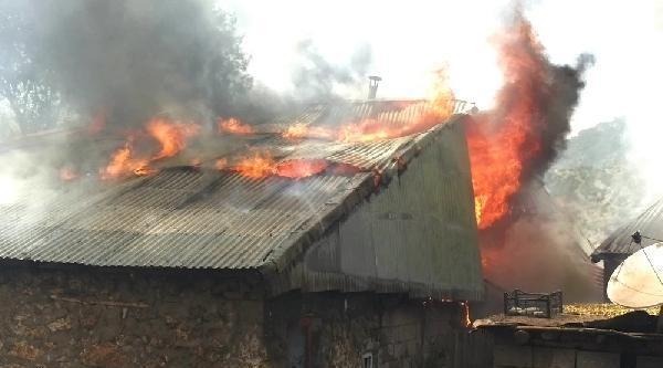 Hakkari'de Köydeki Yangın 2 Evi Kül Etti