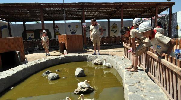Hayvanat Bahçesinin Minik Bakıcılarına Sertifika