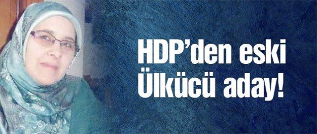 HDP'den 2015 genel seçimi için eski Ülkücü aday