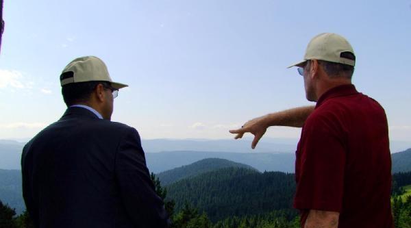 Her Yıl 21 Bin 381 Hektar Orman Alanı Kül Oluyor