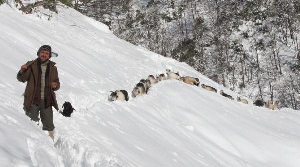 Hes Tünelinden Geçen Ekipler Mahsur Kalan 2 Çoban Ve Koyunlara Ulaşti