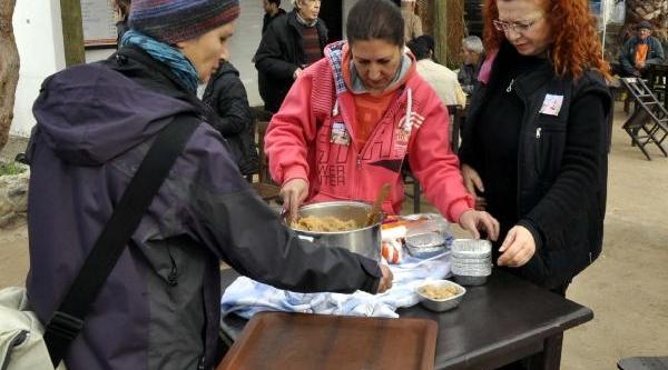 Hollandali Öğretmen Gümüşlük'E Gömüldü