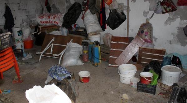 Idil'de Pkk Operasyonu: 3 Gözalti