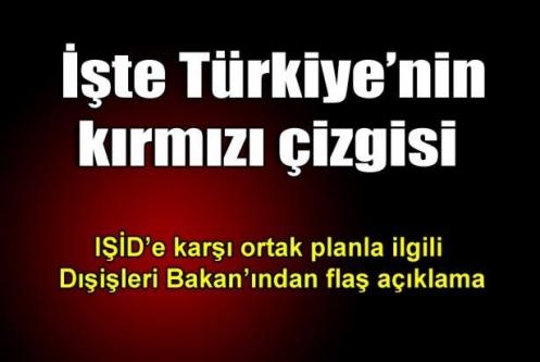 'Irak'a gönderilecek silahlar PKK'nın eline geçmemeli'