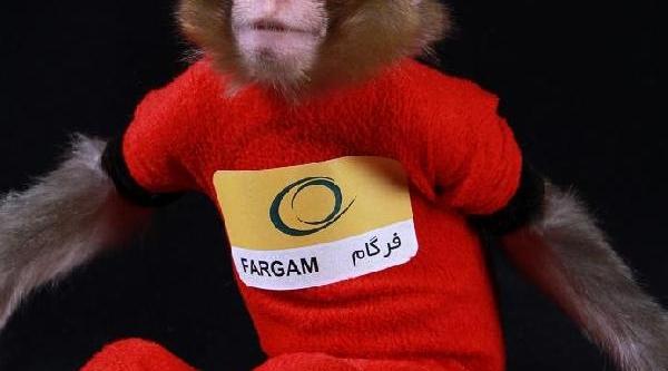Iran Uzaya Maymun Gönderdi