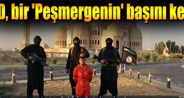 IŞİD bir peşmergenin kafasını kesti!