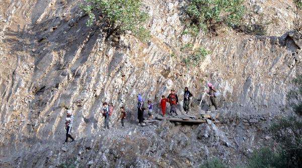 Işid'den Kaçan Ezidilerin Yollardaki Dramı Devam Ediyor