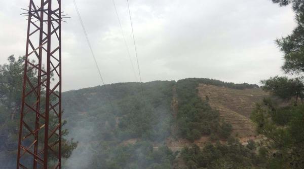 İslahiye'de 3 Hektarlık Ormanlık Alan Küle Döndü