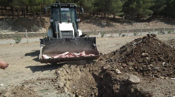 İslahiye'de Sağlığa Zararlı 130 Kilo Et İmha Edildi