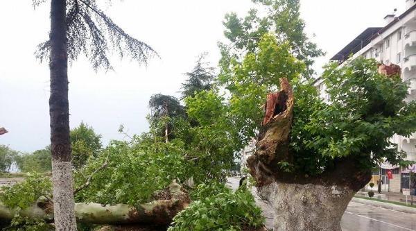 Isparta'da Fırtına Ve Yağmur Zor Anlar Yaşattı