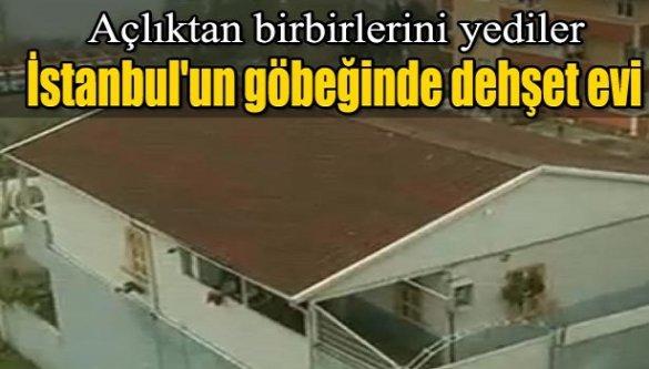 İstanbul'un göbeğinde dehşet evi! Açlıktan birbirlerini yediler!