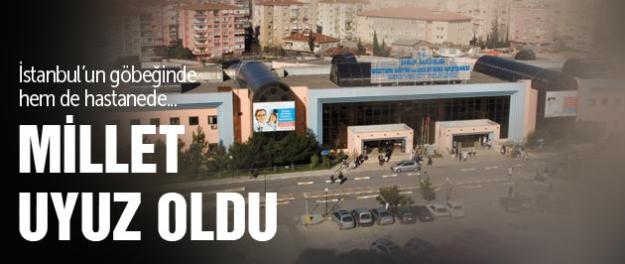 İstanbul'un göbeğinde uyuz rezaleti!