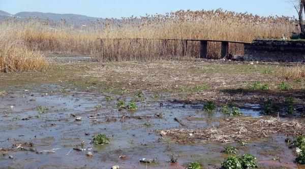 İşte Sapanca Gölünün Son Hali