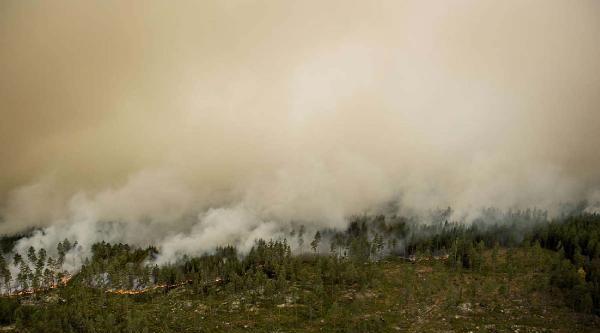 İsveç'te Büyük Orman Yangını: 1 Ölü, 1 Yaralı