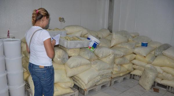 İzmir'de 10 Ton Küflü Peynir Ele Geçirildi