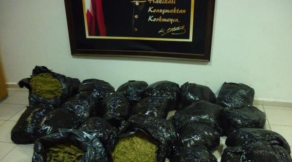 İzmir'de 141 Kilo Esrar Ele Geçirildi