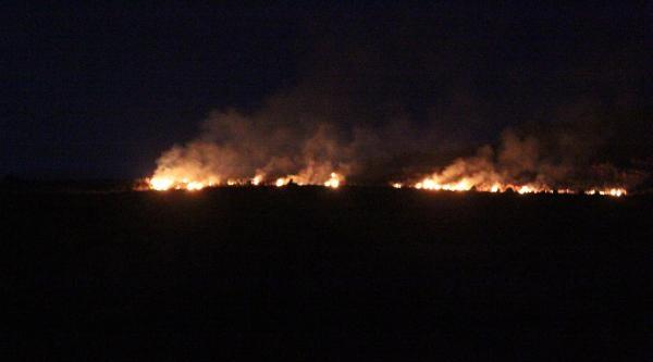 İzmir'de 3 Hektar Otluk Alanda Yandı