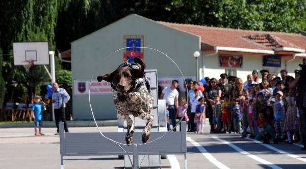 Jandarma Köpeklerinin Gösterisi İlgi Çekti