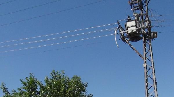 Kablo Çalmak İçin Çiktiği Direkten Düşerek Öldü