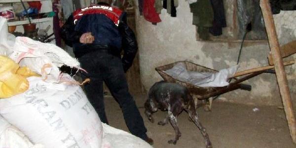 Kahramanmaraş'ta Uyuşturucu Şebekesine Darbe: 12 Gözalti
