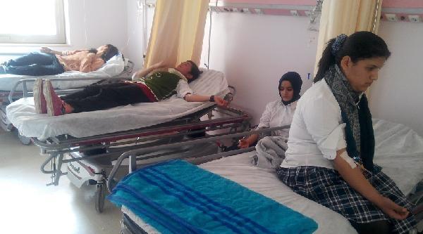 Kahta'ta 8 Liseli Kız Hastanelik Oldu