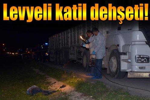 Kamyon şoförü, levye ile dövülerek öldürüldü
