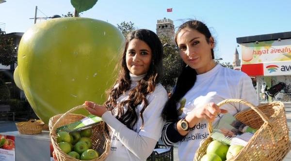 Kansere Karşi Yeşil Elma Antalya'da
