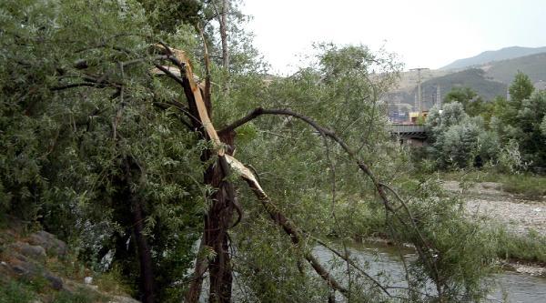 Karabük'te Fırtına Etkili Oldu