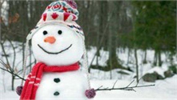 Kardan adam yasak