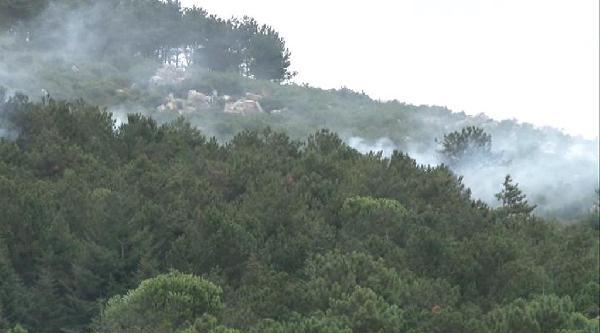 Kartal'da Orman Yangını
