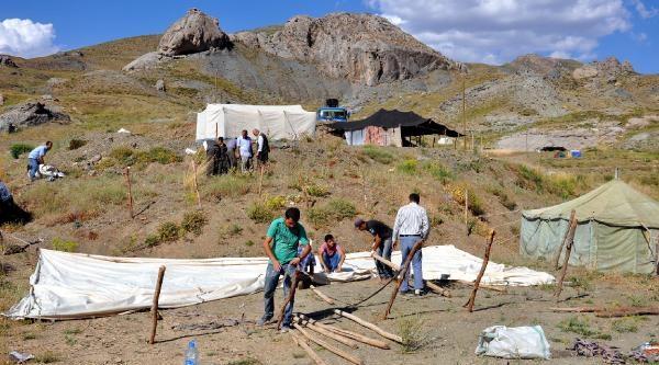 Kato Dağı Koyun Kırpma Festivali Hazırlığı