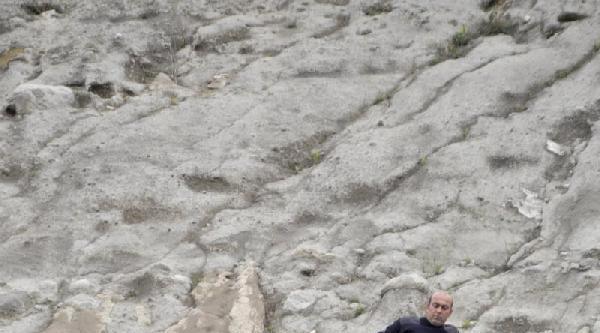 Kayalıklarda Mahsur Kalan Köpeği İtfaiye Kurtardı