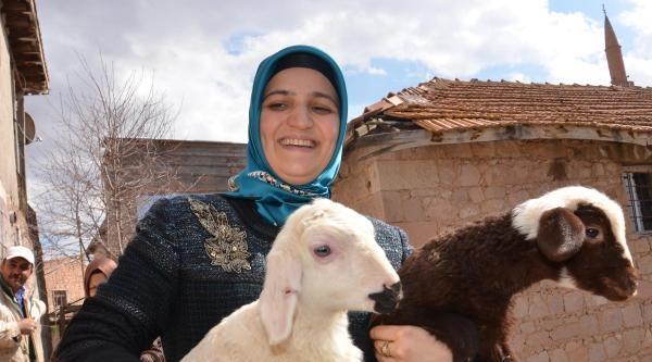 Kayseri'de Kadın Başkan Adayları Oy Peşinde