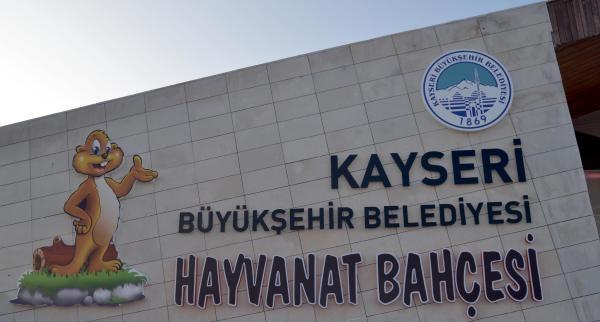 Kayseri'deki Hayvanat Bahçesi, Hasta Hayvanlara Da Ev Oldu