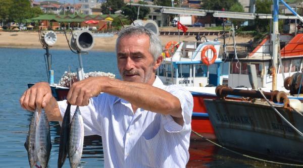 Kefkenli Balıkçılar Av Sezonuna Hazır