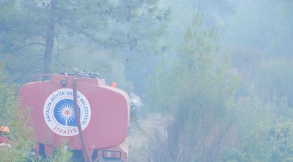 Kemer'de Çikan Orman Yangınında 5 Hektar Alan Zarar Gördü