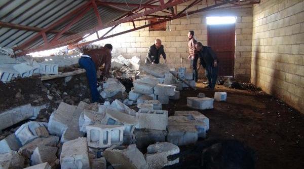 Kilis'te Yağmur Nedeniyle Ahirin Duvari Çöktü, 25 Keçi Telef Oldu